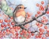 Robins Berry Perch- ACEO print 2.5x3.5 wildlife and botanical nature seasonal illustration