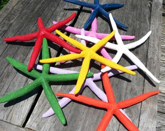 Real Starfish-Painted Real Starfish-Wedding Decoration-Wall Decoration-Red Starfish-Tropical Decoration-Beach Party-Large Starfish-Beachy