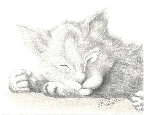 Articoli simili a originale matita gatto ritratto di for Disegno gatto facile