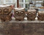 RESERVED The Wise Old Owls Sat on an Oak