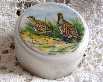 Antique English Apothecary Porcelain Pheasant Birds Pot