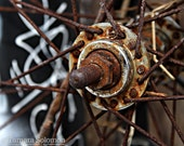 20x16 Old Spokes - Urban Photography - Custom Listing for Regina