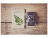 rustic photograph, camera photograph, woodland, book photograph, travel photograph, green, fern, leaf, beige, brown, cotswolds, england - oohprettyshiny