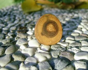 Wooden Ring - Yellow PLUM Tree Branch Handmade Wooden Ring