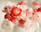 Red and Pink Flower Photo, ranunculus, flower print, shabby chic, cottage home decor, still life, flowers, floral, red flower print, for her