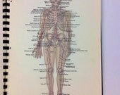 Vintage anatomy sketch book 30 color plates and transparent title pages