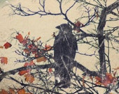 Autumn Crow, Crow on bare branches with coppery autumn leaves, corvid corvidae, crow photo, black, copper leaves, 8 x 8ins, autumn leaves