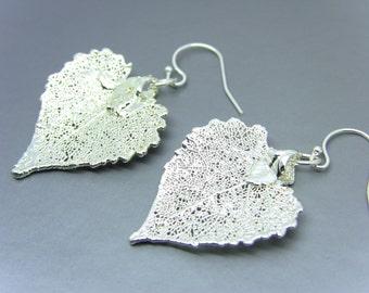 Sterling Silver Cottonwood Leaf Earrings