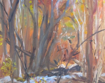 Deep in the Woods - an Oil Painted Near Mendham, NJ