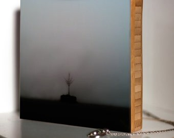 Bamboo Block, wall art, tree,  nautical, living room, bathroom, original, photography, landscape, outdoors, print, black and white, fog,