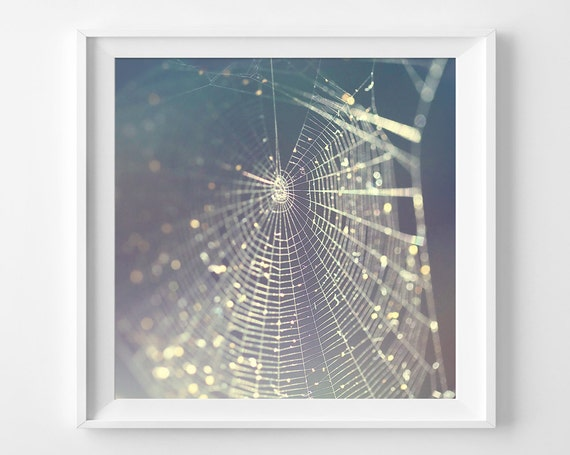 "Spiderweb Photograph Unframed / METALLIC paper / woodland fantasy sparkle purple blue gray environment / photography print / ""Glitter Trap"""