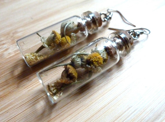 Dried Chamomile Flower Apothecary Mini Bottle Earrings