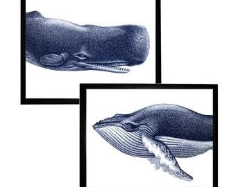 Blue Whale Portrait Nautical Vintage Style Art Print Set Beach House