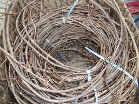 100 Feet of Grape Vines Fresh Cut to Order, easiest to shape, Crafts, Create Wreaths, Swags, Decorative, Rustic, Great for Weddings