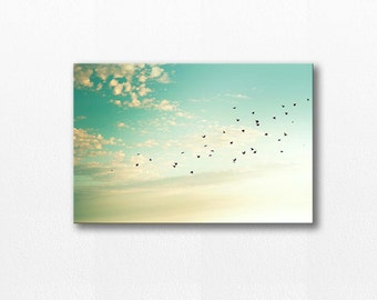 birds photography canvas wrap fine art photography canvas art 20x30 12x18 large canvas art birds flying photography mint cream gallery wrap
