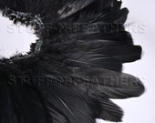 Wholesale / bulk feathers - Black goose nagoire feathers, goose shoulder feathers strung, for millinery, costumes / 1 ft / 30.5 cm / FB95-4