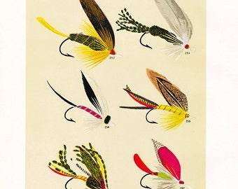 Vintage fly fishing print