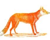 Fox screenprint!