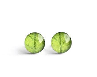 Green leaf post earrings, Surgical steel stud, Tiny earring studs, Nature stud earrings