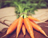 Food Photography - Kitchen Art - Carrots Photograph - 8x10 Fine Art Photography Print - Green Orange Brown Kitchen Decor
