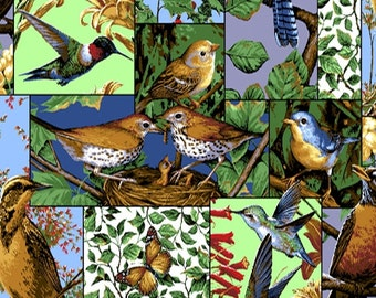 Humming Birds allover print - leaves - green - red - BTY - sewing - quilting