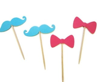 Modern Gender Reveal Food Pick - Bow and Mustache, Aqua and Pink, Pink Bows, Aqua Mustache, Baby Showers