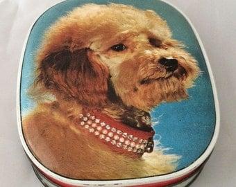 Poodle sweet tin - Edward Sharp vintage 1950s