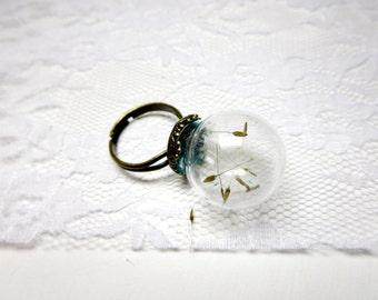 Dandelion  ring -  dandelion necklace-  Make A Wish Glass ring- Dandelion Seed  bracelet-Transparent Round real  Flower