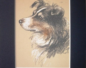 HYDE PARK SHEEPDOG Vintage mounted 1939 Lucy Dawson dog plate print Unique gift