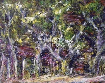 """sale 8""""x10"""" WOODS ACROSS FROM Jj's original kimartist oil pastel painting landscape central California new western black white yellow sfa"""