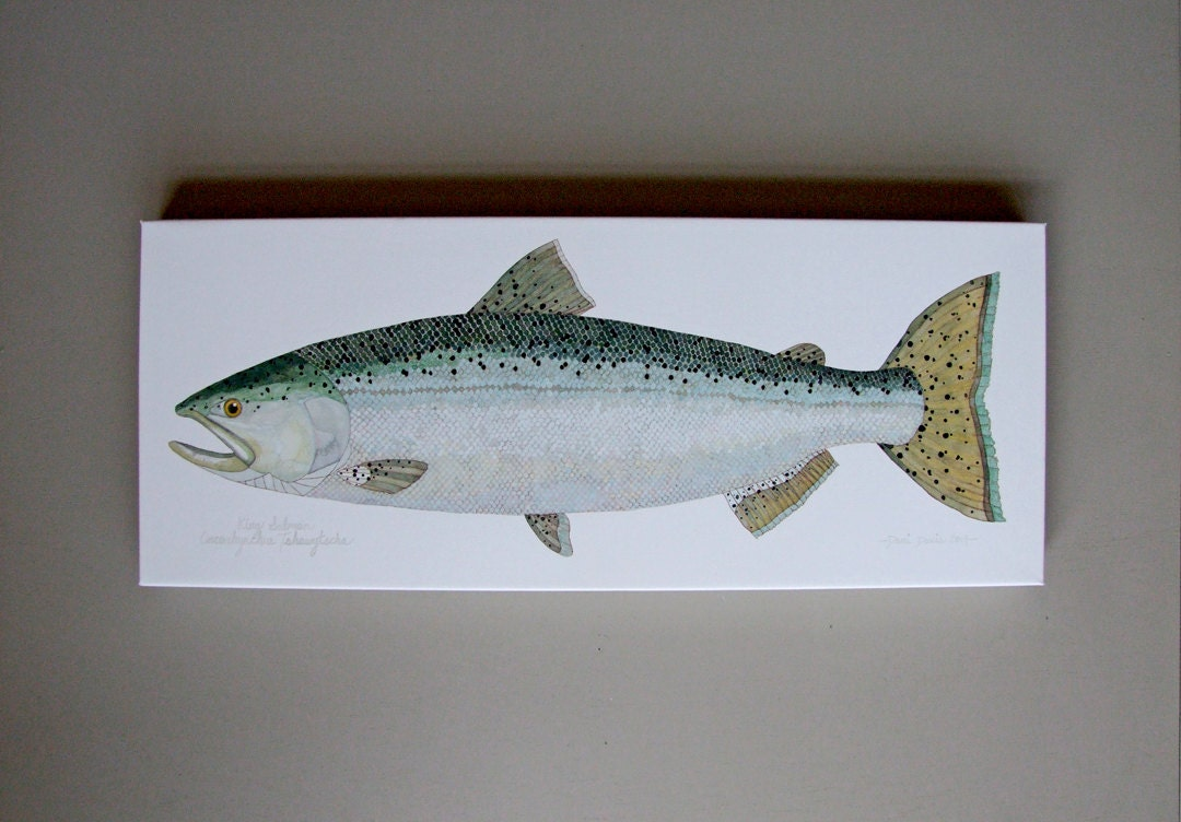 Fly fishing home decor 28 images fly fishing home for Fly fishing decor