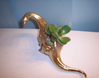 Gold Painted Dinosaur Planter Plastic Toy and Planted with  Assorted Succulents Can Still Ship for Mother's Day