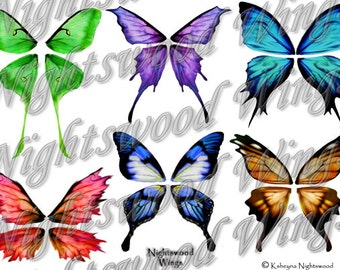 Instant Download OOAK Fairy Pixie Bear Fantasy Wing sheet 10