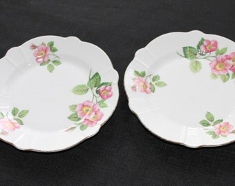 Pair Windsor Fine Bone China Side Plates with Roses England