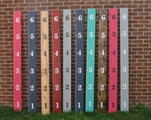 Ruler Growth Chart vinyl numbers set- Black or White