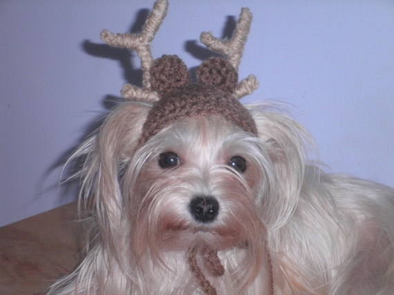 For cat or dog brown deer christmas holiday cap with antlers costume