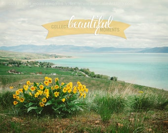 Hello Spring -Bear Lake Utah postcard