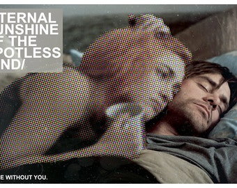 "Eternal Sunshine of the Spotless Mind 11x17"" Landscape Movie Poster"