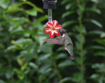 Hummingbird feeder tubes 2 pcs