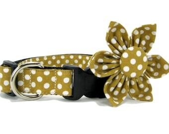 Camel Polka Dot  Dog Collar with Flower set  (Mini,X-Small,Small,Medium ,Large or X-Large Size)- Adjustable