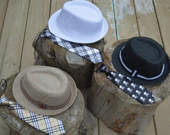 Fedora hat and neck tie set.  Mix and match.  Choose your set.  Boys or girls.  Toddler set