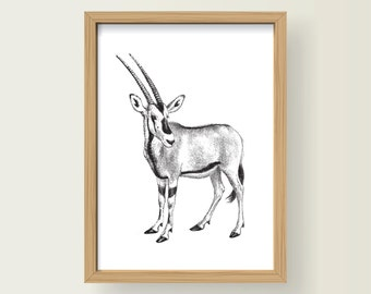Safari Animal Beisa Oryx Nursery Decor A3 Print