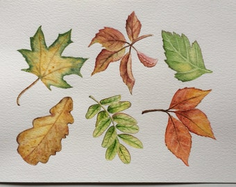 Original watercolor painting Autumn Leaves,wall decor