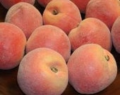 1 Dozen Amazing Artificial Peaches Free Shipping!