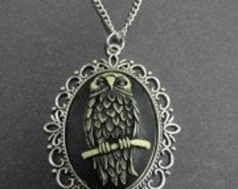 Owl Cameo Silver Frame