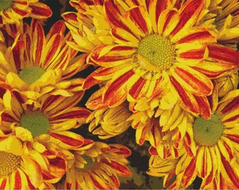 Yellow and Red Flowers PDF Cross Stitch Pattern