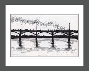 """Bats of Congress Bridge Austin, TX: GICLEE PRINT  11""""X14""""   A026"""