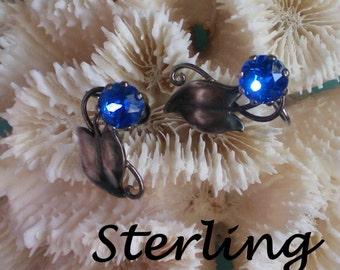 Sterling Silver Blue Stone Earrings - 3008