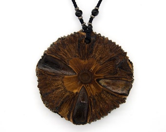 Pendant banksia nut. Jewelry. Boho. Exotic hardwoods Australia. Unique necklace. (NB-101)