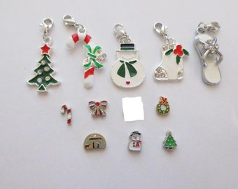 charms for origami owl lockets and living lockets for